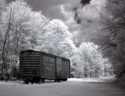 Eerie Photo Posters - Rail Car Poster by Terry Reynoldson