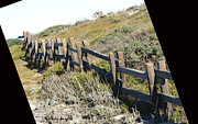 Beach Fence Digital Art Posters - Rail Fence Black Poster by Barbara Snyder