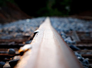 Greg Simmons Prints - Rail Line Print by Greg Simmons