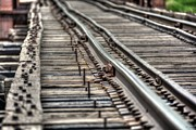 Railroad Spikes Art - Rail by M Dale