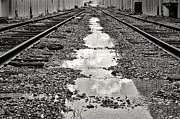 Puddle Prints - Railroad 5715BW Print by Rudy Umans