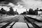 Dual Posters - Railroad Crossing Dual Train Tracks Railroad Florida Usa Poster by Joe Fox