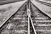 Railroad Metal Prints - Railroad Tracks Metal Print by Olivier Le Queinec