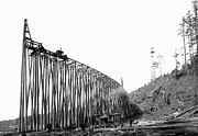 Daniel Hagerman - RAILROAD TRESTLE...