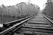 Waccamaw Posters - Rails over water Poster by Jessica Brown