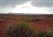 The Plateaus Photos - Rain at Monument Valley by Heather Coen