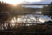 Rain Drops On Railing River View 1 Print by Susan Garren