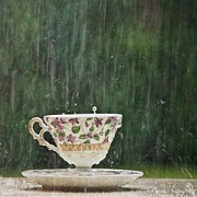 Mary Hershberger - Rain on a Teacup - II