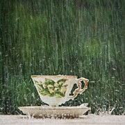 Mary Hershberger - Rain on a Teacup - I