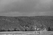 Steve Ohlsen - Rain Walk - Yellowstone