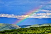 Rainbow Above The Canyon Print by Janice Rae Pariza