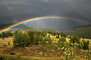 Adam Jewell - Rainbow After The Monsoon