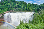 Steven Yacuzzo - Rainbow at Lower Falls
