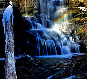 Matthew Winn Posters - Rainbow At Station Cove Falls Poster by Matthew Winn