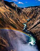 Yellowstone National Park Prints - Rainbow at the Grand Canyon Yellowstone National Park Print by Edward Fielding