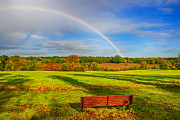 Rainbow Canvas Framed Prints - Rainbow Bench view Framed Print by Chris Thaxter