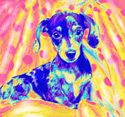 Dachshund Puppy Digital Art Posters - Rainbow Dachshund Poster by Jane Schnetlage