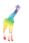 Beauty Balance Design - Rainbow Giraffe