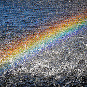Good Luck Prints - Rainbow in the Water Print by Brandi Fitzgerald