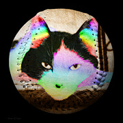 Fun Mixed Media Prints - Rainbow Kitty Baseball Square Print by Andee Photography