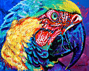 Fowl Paintings - Rainbow Macaw by Maria Arango