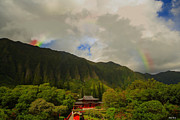 Tibet Framed Prints - Rainbow over the Temple Framed Print by Cheryl Young