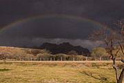 Robert Ford - Rainbow Over Zion...