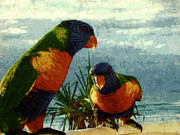 Photo Manipulation Photo Posters - Rainbow Parrots Poster by Digital Art Photo Studio