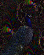 Royal Peacock Digital Art - Rainbow Peacock Fractal by TnBackroads Photography