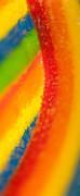 Rainbow Print by Rebecca Skinner