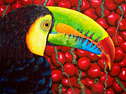 Bird Tapestries - Textiles Prints - Rainbow Toucan Print by Daniel Jean-Baptiste