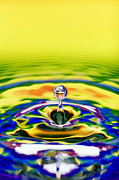 Rainbow Water Drop Print by Tim Gainey