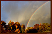Colors Of Autumn Posters - Rainbows Of Autumn Poster by Debra     Vatalaro