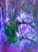 Raindrops Prints - Raindrops On Lavender Roses Print by Carol Cavalaris