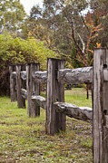 Raindrops On Rustic Wood Fence Print by Michelle Wrighton
