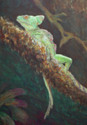 Lizards Paintings - Rainforest Basilisk by Margaret Saheed