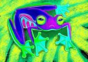 Nick Gustafson - Rainforest Frog