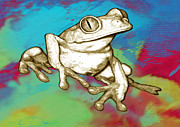 Rainforest Abstract Prints - Rainforest Frog Stylised Pop Art Drawing Portrait Poster Print by Kim Wang