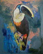 Toucan Print Framed Prints - Rainforest Toucan Framed Print by Michael Creese