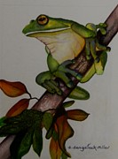 Frog Mixed Media Originals - Rainforest View    sold by Sandra Sengstock-Miller