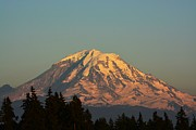Gayle Swigart - Rainier at Dusk