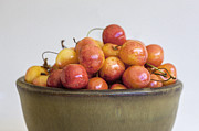 Green And Brown Photos - Rainier Cherries and Ceramic Bowl by Rich Franco