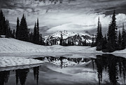 Mt Posters - Rainier Reflections Poster by Mike  Dawson