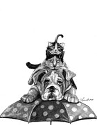 Umbrella Drawings Prints - Raining Cats And A Dog Print by J Ferwerda