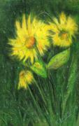 Yellow Leaves Drawings Prints - Rainy Daisy Print by Carol Sweetwood