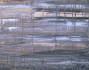 Blending Originals - Rainy Day Asphalt by Annette Egan