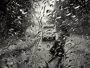 Jonathan Wilkins - Rainy day woman
