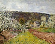 Orchard Posters - Rainy spring near Paris Poster by Alfred Sisley