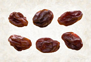 Tasty Prints - Raisins Print by Danny Smythe