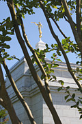 Angel Moroni Prints - Raleigh NC LDS Temple Print by Nathanael Verrill